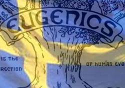 Resultado de imagen de suecia y la eugenesia